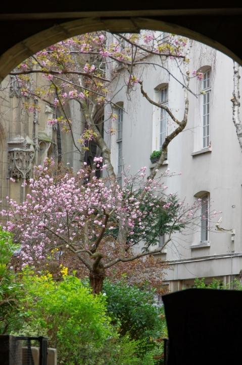 Vestiges du Marais médiéval... Maisons à pan de bois, église gothique...