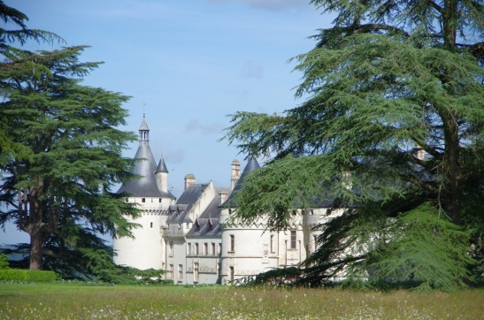 Chaumont sur Loire Bdef