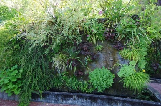 Mur végétal Bdef