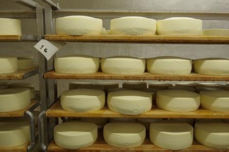 Cave à fromages sous le cloitre de l'abbaye de Tamié
