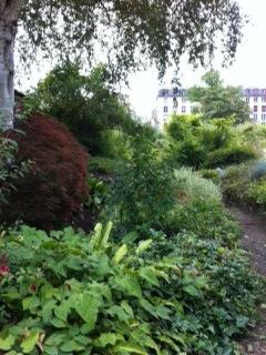 jardin détail